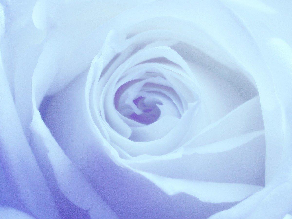 Oryginalne upominki zamiast kwiatów